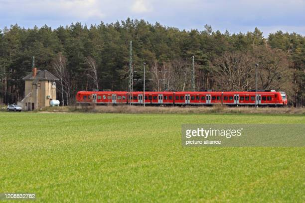 A suburban train runs through the countryside near Rogätz north of Magdeburg The SBahn Mittelelbe is part of the local public transport system in the...