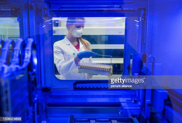 March 2020, Schleswig-Holstein, Geesthacht: Katrin Haack, biology laboratory technician of the LADR laboratory network Dr. Kramer and colleagues,...