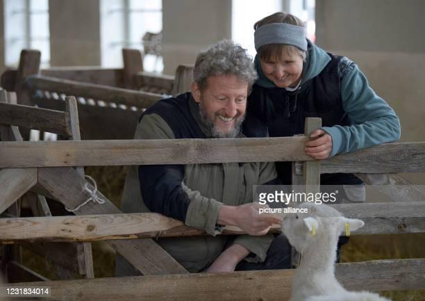 March 2021, Brandenburg, Roskow: Farmer Katja Behling and her husband Christoph stroke a shorn ewe of the Skudden breed in the barn on the Skudden...