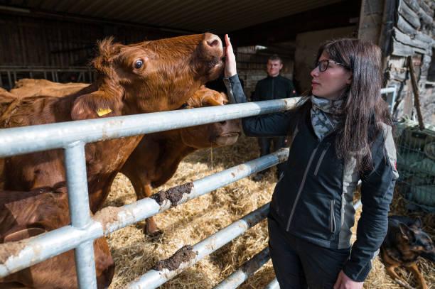 DEU: Slaughter On The Farm