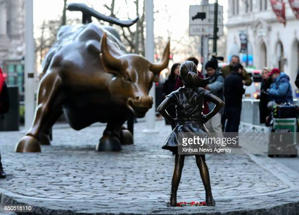 Photo taken on March 9 2017 shows the 'fearless girl' statue facing the bronze bull statue near the Wall Street in New York the United States The...