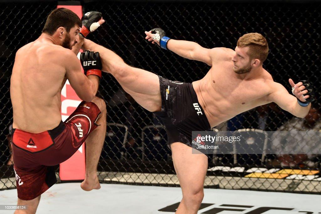 UFC Fight Night Moscow: Ankalaev v Prachnio : News Photo