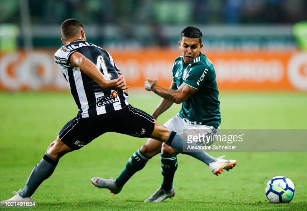 Marcinho of Botafogo and Dudu of Palmeiras compete for the ball during the match for the Brasileirao Series A 2018 at Allianz Parque Stadium on...