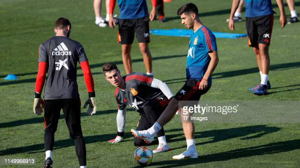 Marco Asensio of Spain controls the ball during a Spain international training session at Las Rozas sports complex on June 04 2019 in Madrid Spain