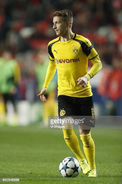 Marco Reus of Borussia Dortmundduring the UEFA Champions League round of 16 match between SL Benfica and Borussia Dortmund on February 14 2017 at...