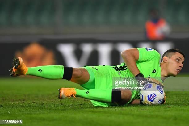 Marco Silvestri of Hellas Verona in action during the Serie A match between Hellas Verona FC and Benevento Calcio at Stadio Marcantonio Bentegodi on...