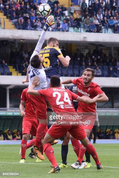 Marco Sportiello goalkeeper of ACF Fiorentina saves his goal during the Serie A match between Hellas Verona FC and ACF Fiorentina at Stadio...