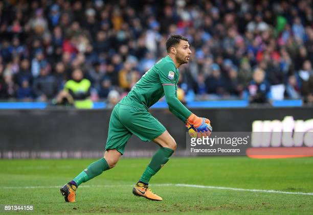 Marco Sportiello of ACF Fiorentina in action during the Serie A match between SSC Napoli and ACF Fiorentina at Stadio San Paolo on December 10 2017...