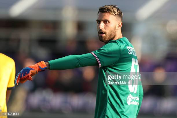 Marco Sportiello of ACF Fiorentina in action during the serie A match between ACF Fiorentina and Hellas Verona FC at Stadio Artemio Franchi on...