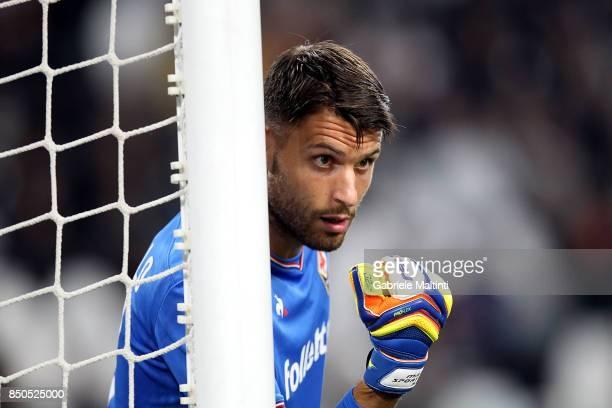 Marco Sportiello of ACF Fiorentina reacts during the Serie A match between Juventus and ACF Fiorentina on September 20 2017 in Turin Italy