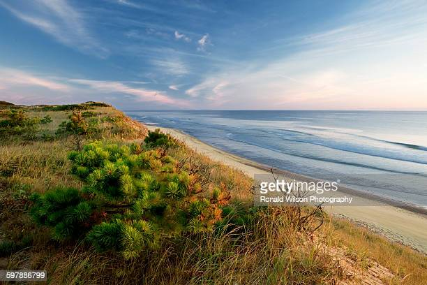 marconi beach, wellfleet - massachusetts stock pictures, royalty-free photos & images
