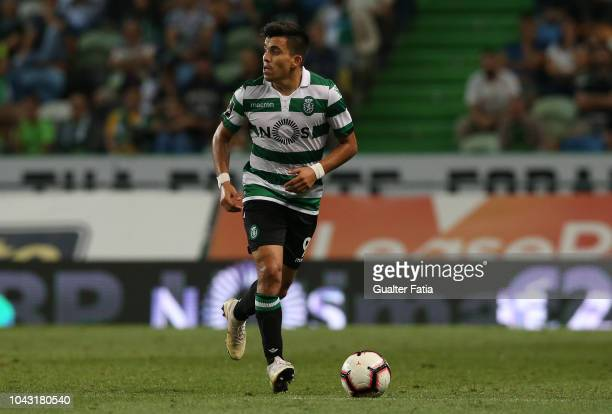 Marcos Acuna of Sporting CP in action during the Liga NOS match between Sporting CP and CS Maritimo at Estadio Jose Alvalade on September 29 2018 in...