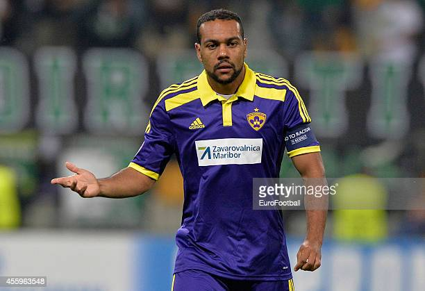 Marcos Tavares of NK Maribor in action during the UEFA Group G Champions League football match between NK Maribor and Sporting Lisbon at the Ljudski...