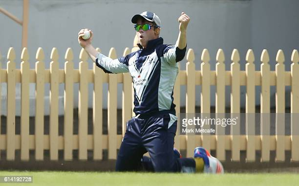 Marcus Harris of the Bushrangers celebrates taking a catch to dismiss Ben Dunk of the Tigers during the Matador BBQs One Day Cup match between...