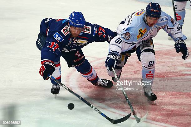 Marcus Kink of Mannheim is challenged by Mirko Hoefflin of Straubing during the DEL match between Adler Mannheim and Straubing Tigers at SAP Arena on...