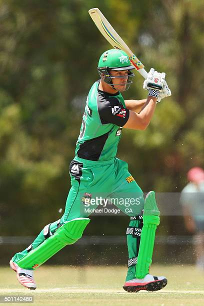 Marcus Stoinis hits a boundary against the Premier All Stars at Casey Fields during Melbourne Stars Family Day on December 13 2015 in Melbourne...