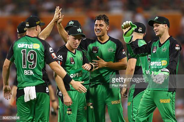 Marcus Stoinis of the Stars celebrates after dismissing Ashton Turner of the Scorchers during the Big Bash League match between the Perth Scorchers...