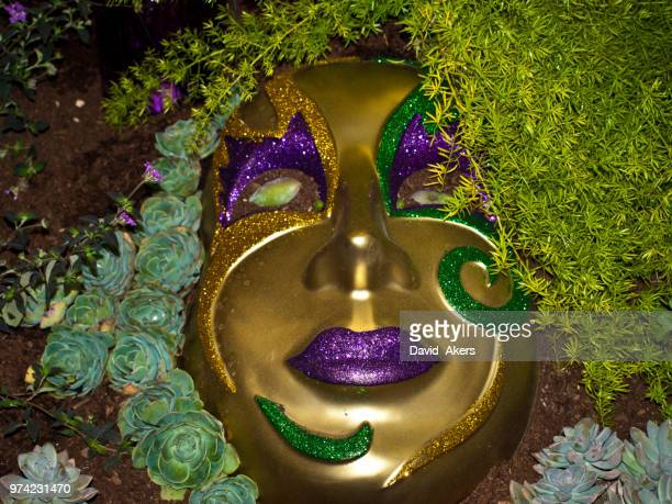 mardi gras - gras stock pictures, royalty-free photos & images