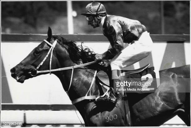 Mardi Gras - Turf - Racehorse. January 26, 1987. .