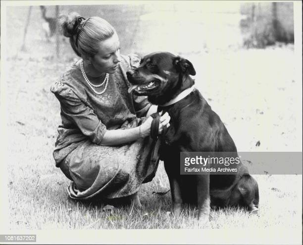 Maree McCaskill from the RSPCA with a Rottweiler dog which was thrown from a car December 31 1987