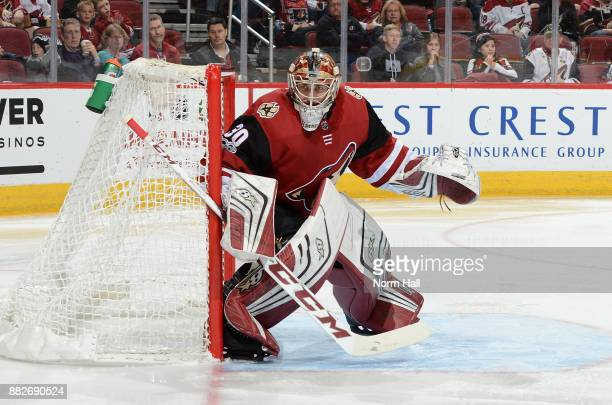 Marek Langhamer of the Arizona Coyotes gets ready to make a save against the Vegas Golden Knights at Gila River Arena on November 25 2017 in Glendale...