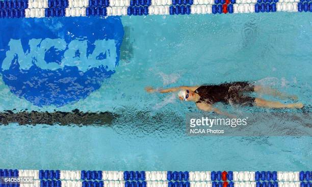 Margaret Hoelzer of Auburn swims in the 200 yard backstroke during prelims at the Division 1 Women's Swimming and Diving Championships held at the...