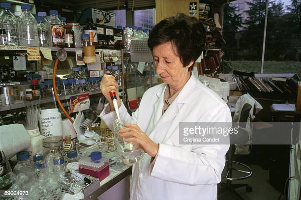 Margarita Salas scientific Margarita Salas working in the laboratory