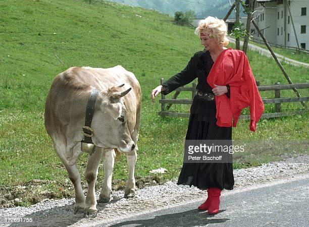 Margot Werner Hotel Berwanger Hof Berwangen Tirol sterreich Europa Kuh Tier Sängerin Schauspielerin MW/PBE Sc