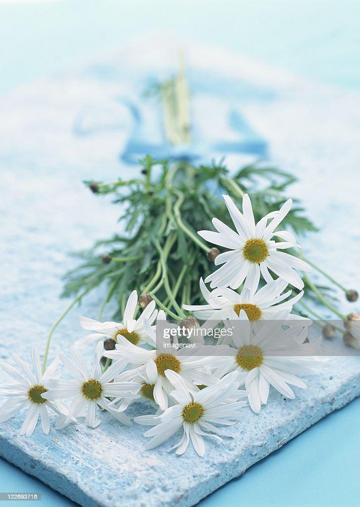 Для, с днем татьяны открытки с цветами