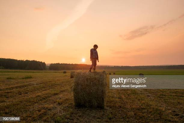 Mari boy standing on hay bale in field, Ural, Russia