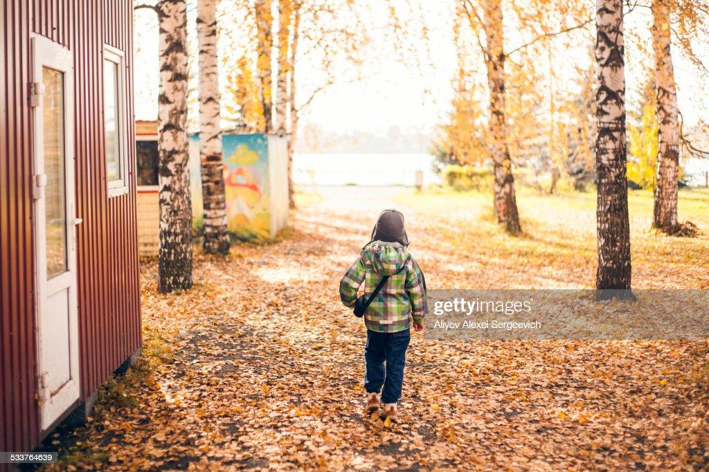 Mari boy walking in autumn leaves : Foto stock
