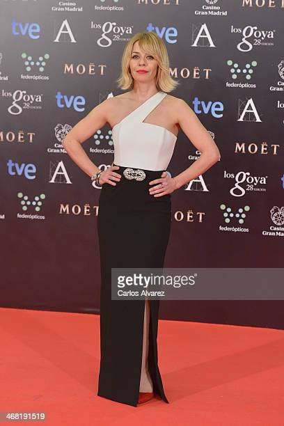 Maria Adanez attends Goya Cinema Awards 2014 at Centro de Congresos Principe Felipe on February 9 2014 in Madrid Spain