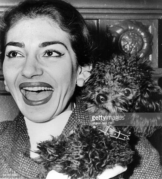 Maria Callas *Sängerin Sopran Griechenland / USAeigentlich Maria Kalogeropoulos Porträt mit ihrem Pudel `Toy' etwa 1956