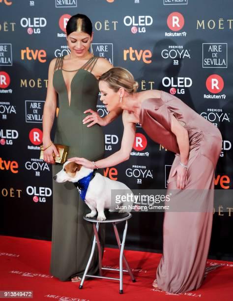 Maria Esteve attends Goya Cinema Awards 2018 at Madrid Marriott Auditorium on February 3 2018 in Madrid Spain