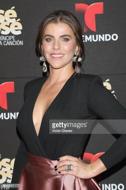 Maria Fernanda Yepes attends the 'Jose Jose El Principe De La Cancion' Telemundo tv series premiere at Four Seasons hotel on January 11 2018 in...