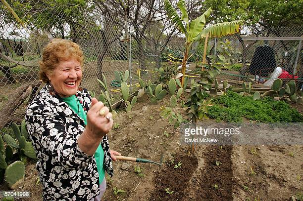 Maria Gonzalez gestures as she expresses her love for her garden plot at the South Central Community Farm on March 9 2006 in Los Angeles California...