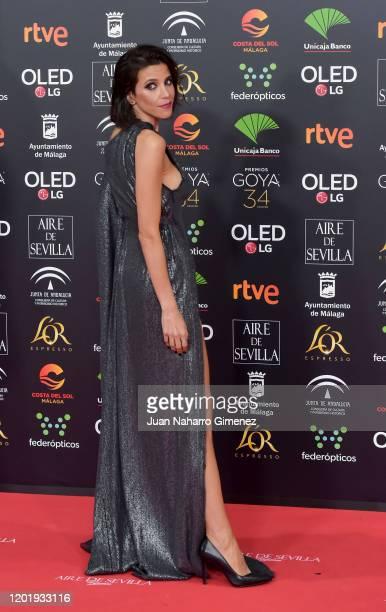 Maria Luis Mayol attends the Goya Cinema Awards 2020 during the 34th edition of the Goya Cinema Awards at Jose Maria Martin Carpena Sports palace on...