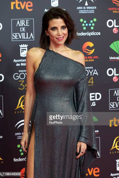 Maria Luisa Mayol attends the 34th 'Goya' Cinema Awards 2020 Red Carpet photocall at Jose Maria Martin Carpena Sports Palace in Malaga Spain on Jan...