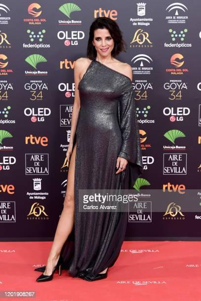 Maria Luisa Mayol attends the Goya Cinema Awards 2020 during the 34th edition of the Goya Cinema Awards at Jose Maria Martin Carpena Sports Palace on...