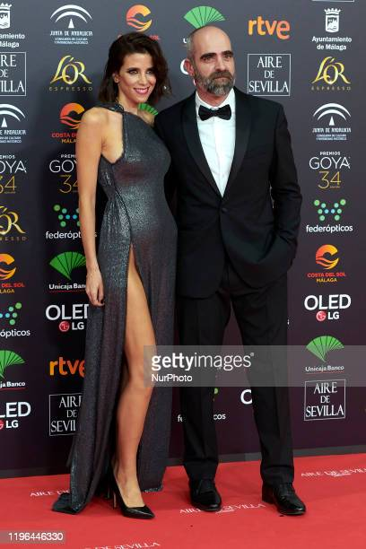 Maria Luisa Mayol Luis Tosar attends the 34th 'Goya' Cinema Awards 2020 Red Carpet photocall at Jose Maria Martin Carpena Sports Palace in Malaga...