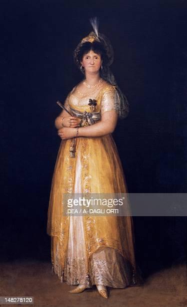 Maria Luisa of Parma Queen of Spain by Francisco de Goya Naples Museo Nazionale Di Capodimonte