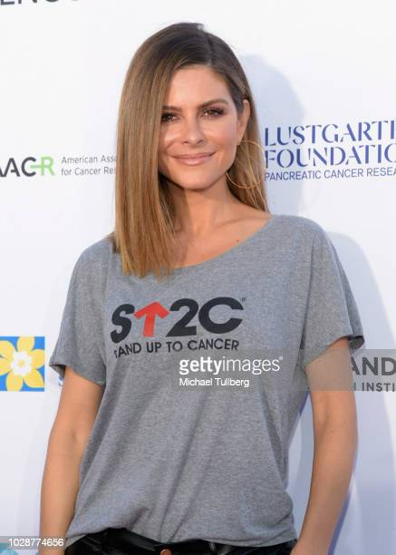 Maria Menounos attends Stand Up To Cancer marks 10 years of impact in cancer research at biennial telecast at Barker Hangar on September 7 2018 in...