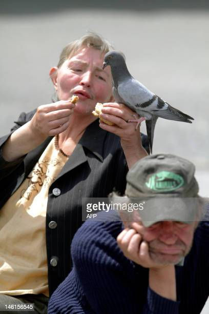 Maria Razny homeless feeds a pigeon during a street football tournament in Cieszyn on June 11 2012 Homeless football world cup will take place on...