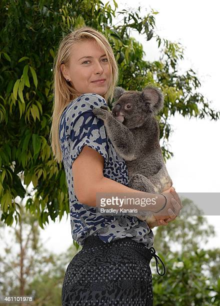 Maria Sharapova of Russia holds a Koala named Sinnamon during day four of the 2015 Brisbane International at Pat Rafter Arena on January 7, 2015 in...