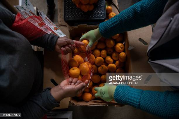 Maria Vasquez and Luiza Oros , package organic tangerines at Stehly Farms Organics in Valley Center, California on March 25, 2020. - Since the...