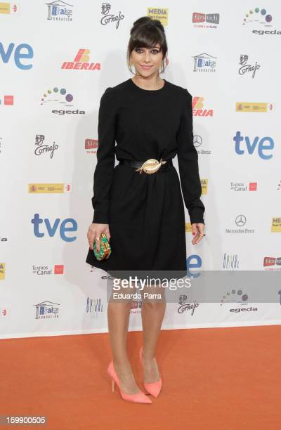Mariam Hernandez attends Jose Maria Forque awards photocall at Canal theatre on January 22 2013 in Madrid Spain
