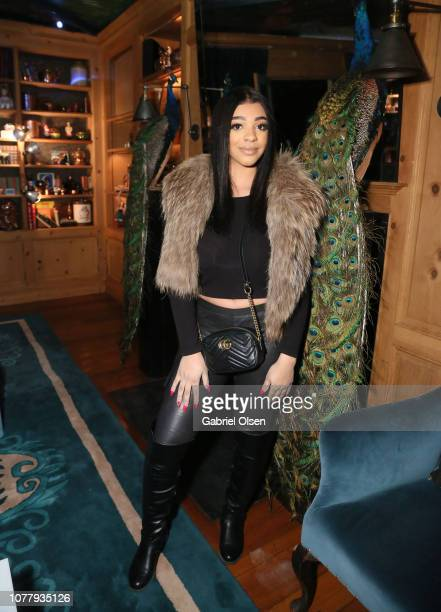 Mariana attends The American Meme special screening after party at the private residence of Jonas Tahlin CEO of Absolut Elyx on December 4 2018 in...