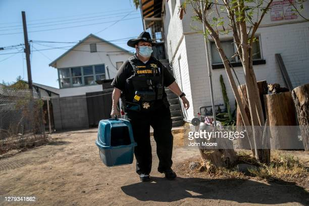 Maricopa County constable Darlene Martinez removes a pet carrier from a home while evicting a family for non-payment of rent on September 30, 2020 in...
