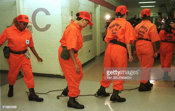 Maricopa County prison inmates participating in what is believed to be the nation's first female chain gang leave the jail on their way to work...