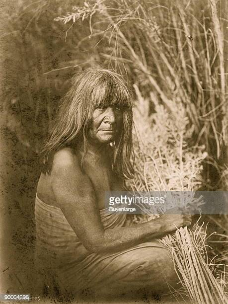 Maricopa Indian threequarter length portrait sitting facing right holding arrowbrush stalks in hand